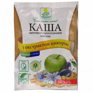Каша Терра овсяная с яблоком сливою и экстр цикор