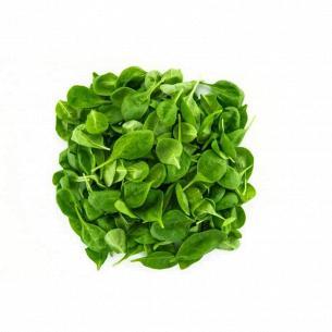 Салат Vita Verde Шпинат