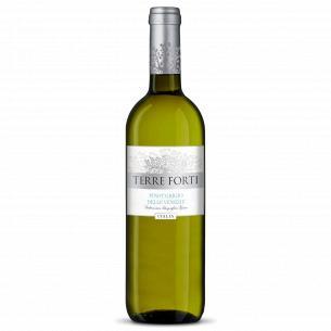 Вино Terre Forti Pinot Grigio delle Venezie
