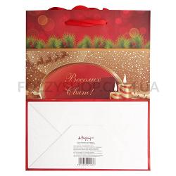Пакет бумажный Happy.com Эконом рождест сред.18х22