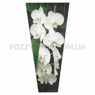Пакет подарочный Креатив-принт Орхидея