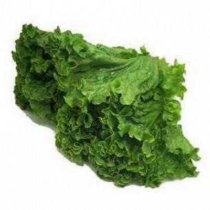 """Салат """"Зелена країна"""" листовой свежий"""