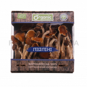 Грибы Organic innovations Пиопини