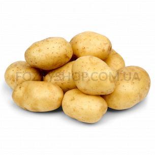 Картопля біла мита
