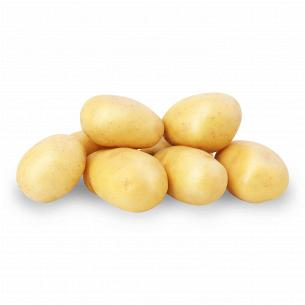Картофель белый ранний мытый