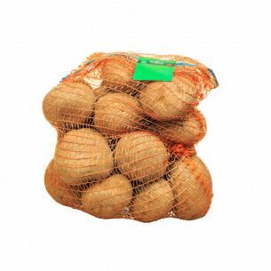 Картофель сетка