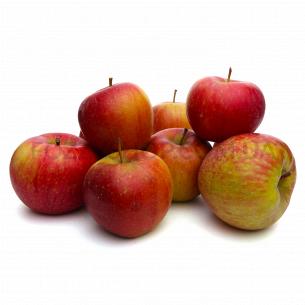 Яблуко Чемпіон