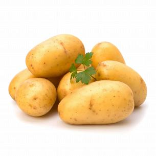 Картопля молода Україна